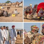 Two Days at the Pushkar Camel Fair