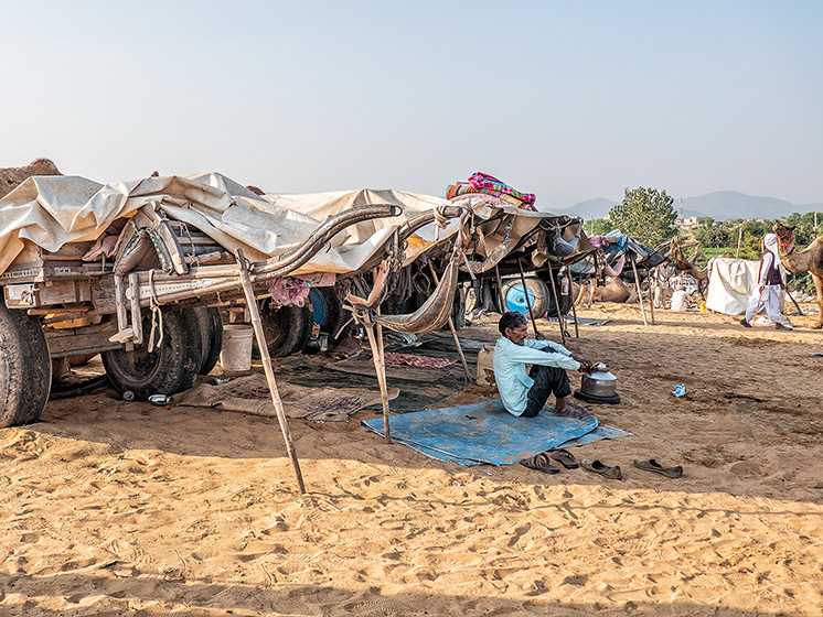 Entire families arrive in overloaded camel carts along with their camels. It's clearly a social event too, meeting friends and relatives whom they haven't seen since last year's Pushkar Camel Fair.