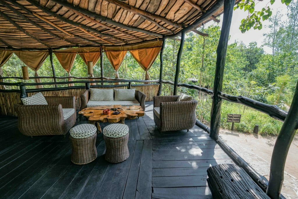 Bar in Treehouse at Bandhavgarh National Park Madhya Pradesh India