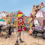 Pushkar Mela Photo Essay: The Largest Camel Fair In The World